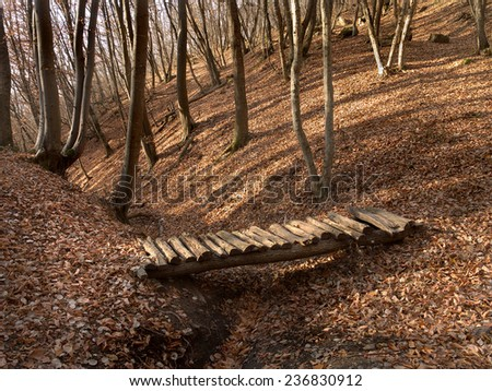 autumn forest with yellow fallen leaves and wooden bridge - stock photo
