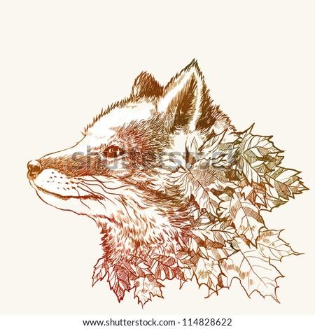 Autumn fox - stock photo