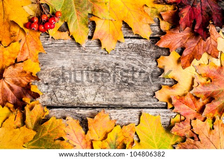 Autumn frame from ashberry and maple leaves on wooden background - stock photo