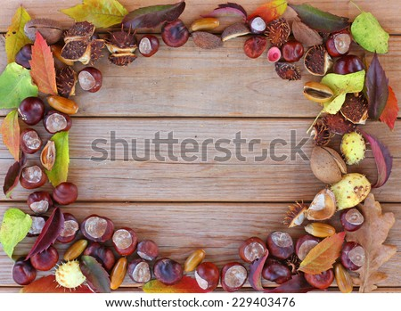 autumn frame with chestnuts, leaves and cones - stock photo