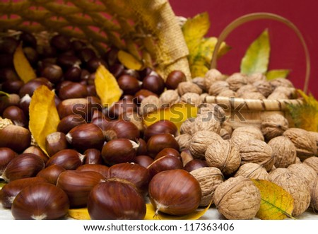 Autumn fruit composition with chestnuts and walnuts - stock photo