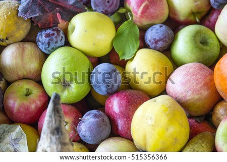 ... apple and grapes autumn harvest autumn fruit pears apple and grapes