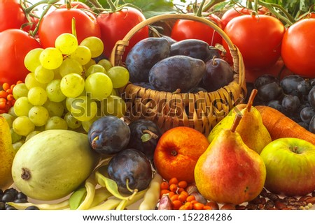 Autumn fruits and vegetables - stock photo