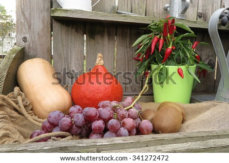 Autumn fruits and vegetables under wooden background - stock photo