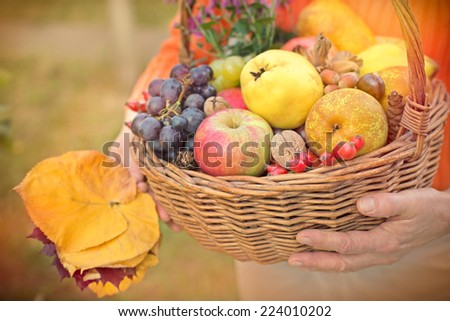 Autumn fruits in hands of woman - stock photo