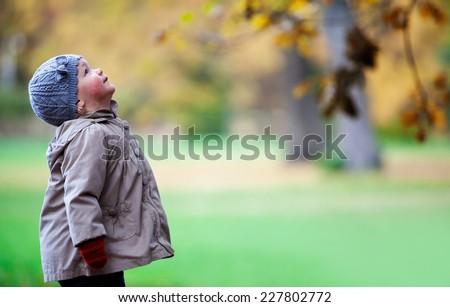 Autumn fun - stock photo