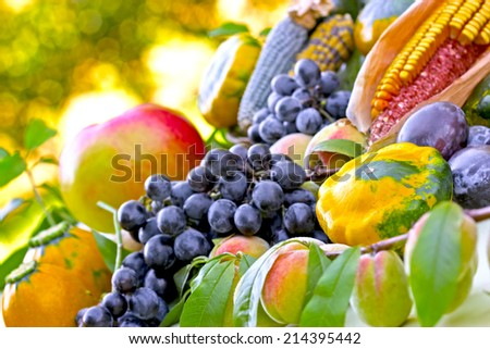 Autumn harvest - organic fruit and vegetables - stock photo