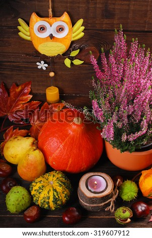 autumn harvest still life with  pumpkins,owl,leaves,chestnuts and heather flowers on wooden background
