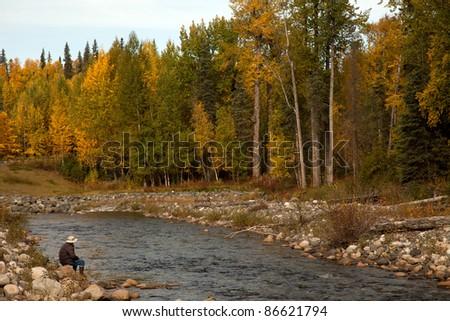 Autumn in Denali National park - stock photo