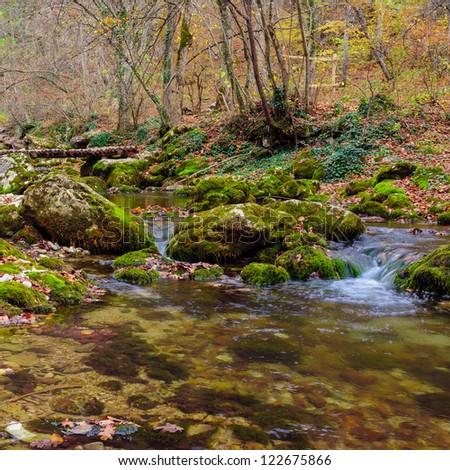 Autumn in forest mountains. Mountain river stream. - stock photo
