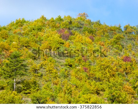 Autumn in Italian Umbria with colorful trees on the hill