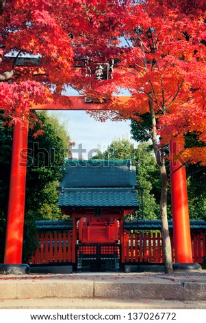 Autumn in Kyoto Japan. Shoot at 2012 - stock photo