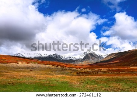 Autumn in mountain - stock photo