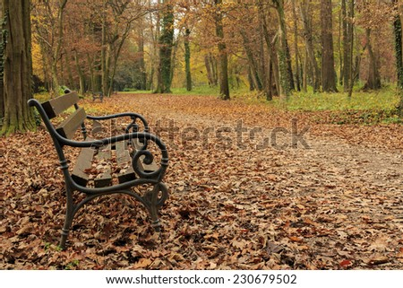 Autumn in park Maksimir - stock photo