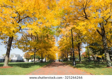 Autumn in the beautiful park full of foliage in Boston. - stock photo