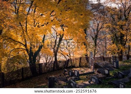 Autumn in the cemetery  - stock photo