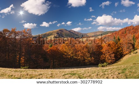 Autumn in the mountains. Sunny day with cumulus clouds. Beech forest - stock photo