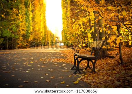 Autumn in the park in Gdansk, Poland - stock photo