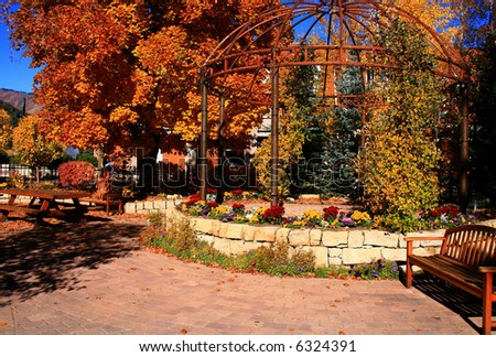 Autumn in the park in small town