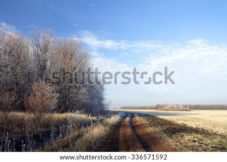 Autumn in wild forest. Frozen trees. Roat to Fall - stock photo
