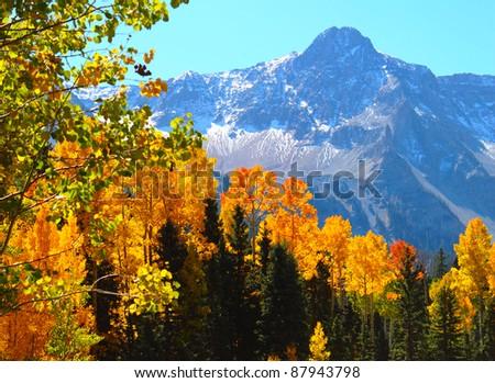 Autumn Intensity - stock photo