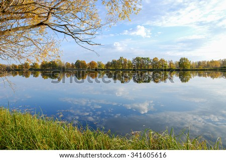 Autumn lake cane trees, green grass. Autumn Landscape. Park in Autumn. The bright colors of autumn in the park by the lake.  - stock photo