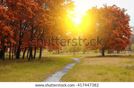Autumn landscape background in a park with narrow pach - stock photo