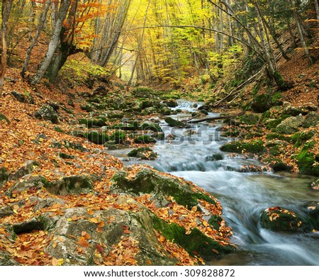 Autumn landscape. Composition of nature. River into canyon. - stock photo