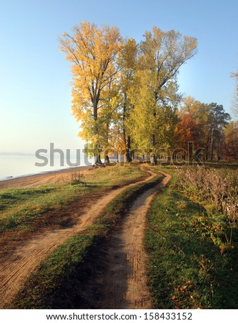 autumn landscape dirt road along the river bank near the forest