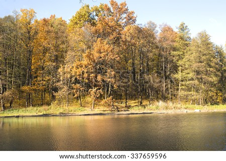 autumn landscape in park with river and blue sky
