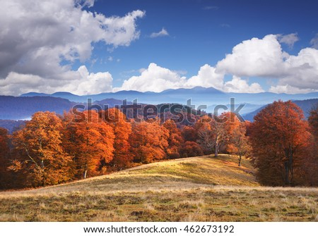 Autumn landscape in the mountains. Beech forest on the hills. Sunny weather with blue sky and cumulus clouds. Art processing photos