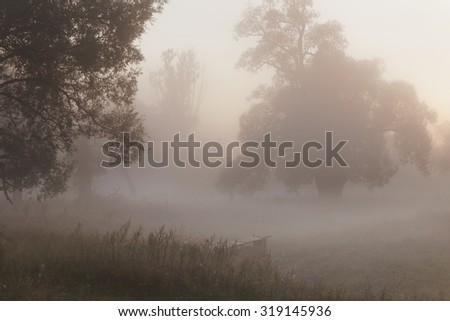 autumn landscape misty morning on the riverbank in the oak grove - stock photo