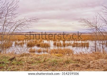 Autumn landscape of Red Deer Lake in Calgary Alberta.  - stock photo