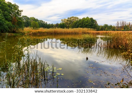 Autumn landscape with lake in forest - stock photo