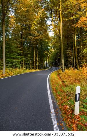 Autumn landscape with road and beautiful  trees. Saxon Switzerland, Germany.Toned image  - stock photo
