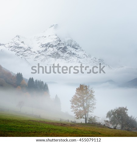 Autumn landscape with trees and dense fog. Mountain top in the snow. Cloudy day . Collage of two frames - stock photo