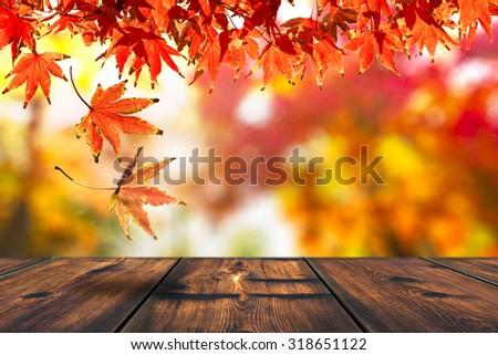 Autumn Leaf Falling On The Wood Table. Autumn Season - stock photo