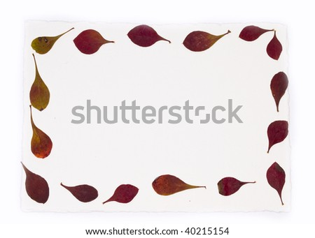 autumn leave on blank note - stock photo