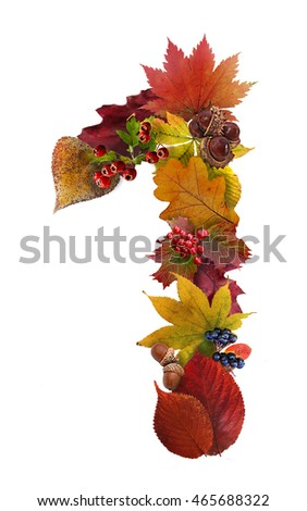 Autumn leaves and berries. Autumn wreath or garland. Number one. Illustration.