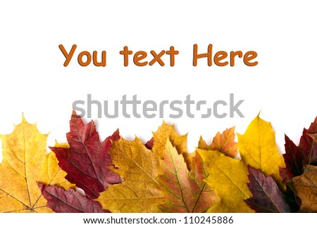 Autumn leaves background. With space for text - stock photo