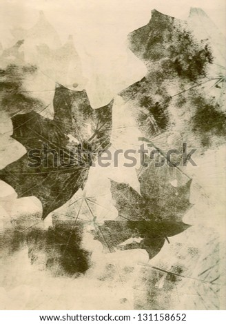 autumn leaves collage background - stock photo