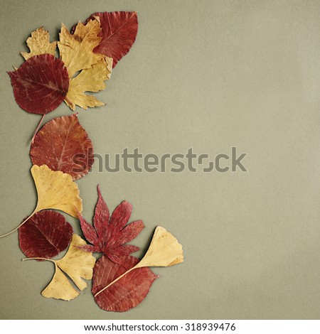 Autumn leaves composition, free space for text - stock photo