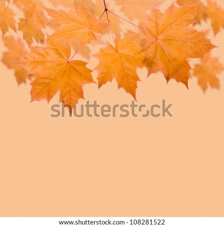 Autumn leaves frame for your text - stock photo