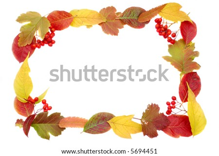 Autumn leaves frame isolated background decor