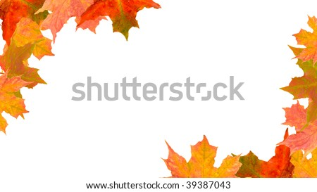 autumn leaves in a the form of a corner borders
