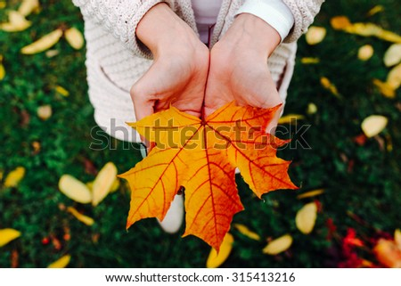 Autumn leaves in girl hands - stock photo