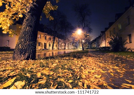 Autumn leaves in the city. Night scenery - stock photo