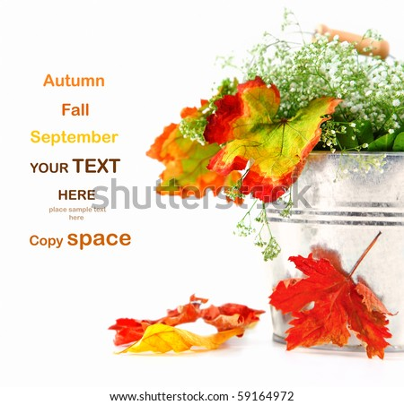Autumn leaves in the pot isolated on white with copy space - stock photo
