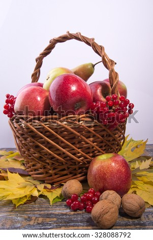 Autumn leaves, nuts, apples, viburnum in a basket on a white background