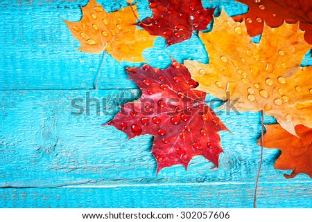 autumn leaves on a beautiful board. wet leaves after a rain. October and November leaves . background for photos . water drops. there is a place for an inscription. top view - stock photo